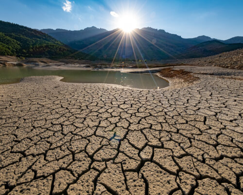 environmental problems, drought, desertification, thirst, pollution of our land and bad scenarios in the world